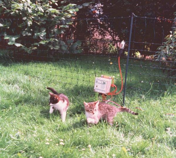 Kaninchen- Hasen- und Katzen Netz * Ersatzpfähle - Qualität von HORIZONT